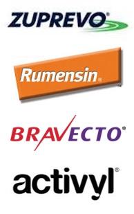 animal brand names